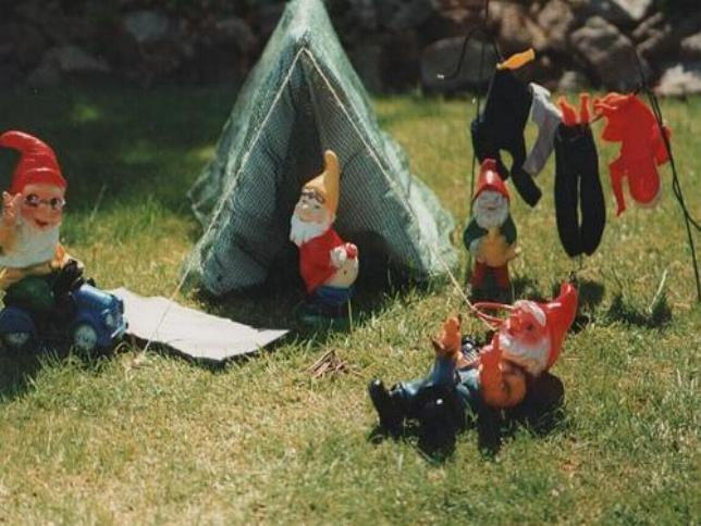 Camping with the Gnomes at West River Westies VIII